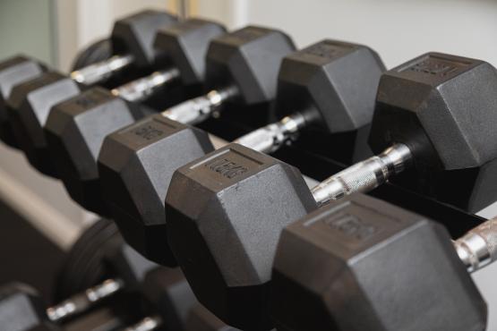 exercise-physiology-img